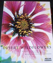 Buk_DesertWildflow_AZHwy